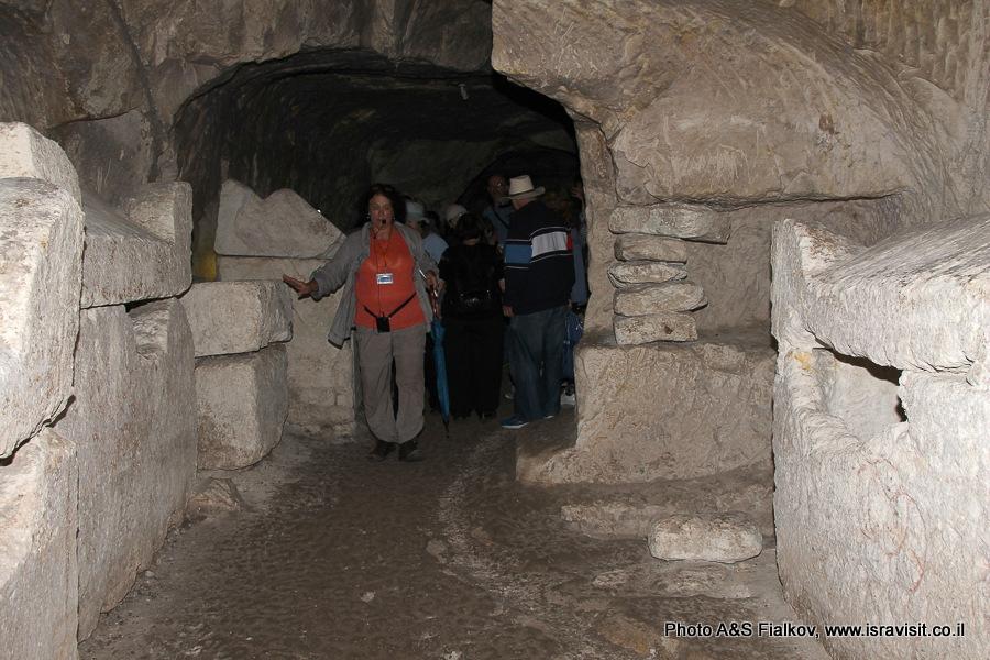 Гид в Израиле Светлана Фиалкова на экскурсии в  национальный парк Бейт Шеарим.