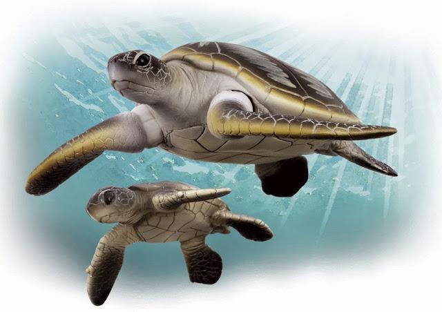 Sản phẩm Mô hình Rùa xanh Ania AS-20 Green Turtle có thể dùng để bày hoặc đồ chơi