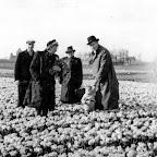 1942 Willem Kavelaars in het tulpenveld_BEW.jpg