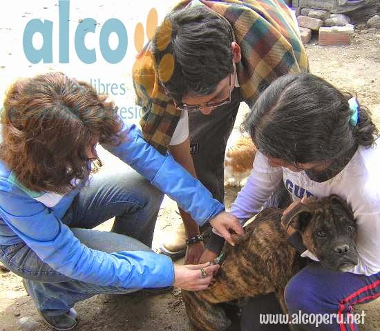 2da asistencia a Pisco por terremoto 2007 (18)