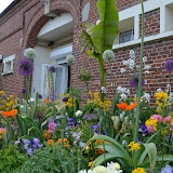 Travaux de fleurissement - 2015-05-21%2B23-33-46.jpg