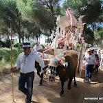 CaminandoalRocio2011_510.JPG