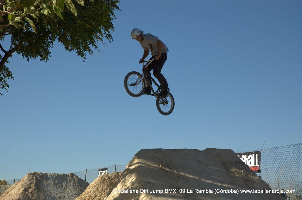 Ballena Dirt Jump BMX 2009 - BMX_09_0079.jpg