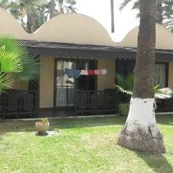 Hotel Paradis Palace's profile photo