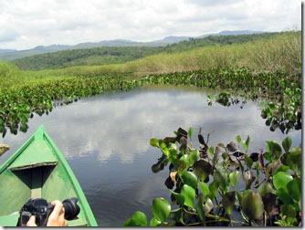 Mini_Pantanal-lencois-ba-remando-1