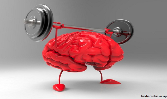 Single Best Type of Exercise for Your Brain?