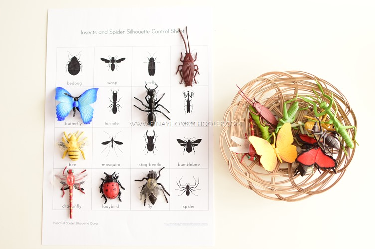 FREE Insect & Spider Silhouette Cards