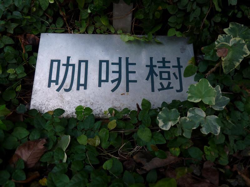 TAIWAN.Taipei - P1080585.JPG