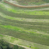 Aerial Shots Of Anderson Creek Hunting Preserve - tnIMG_0395.jpg