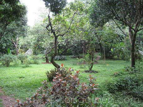Amenities - main-garden_05.JPG