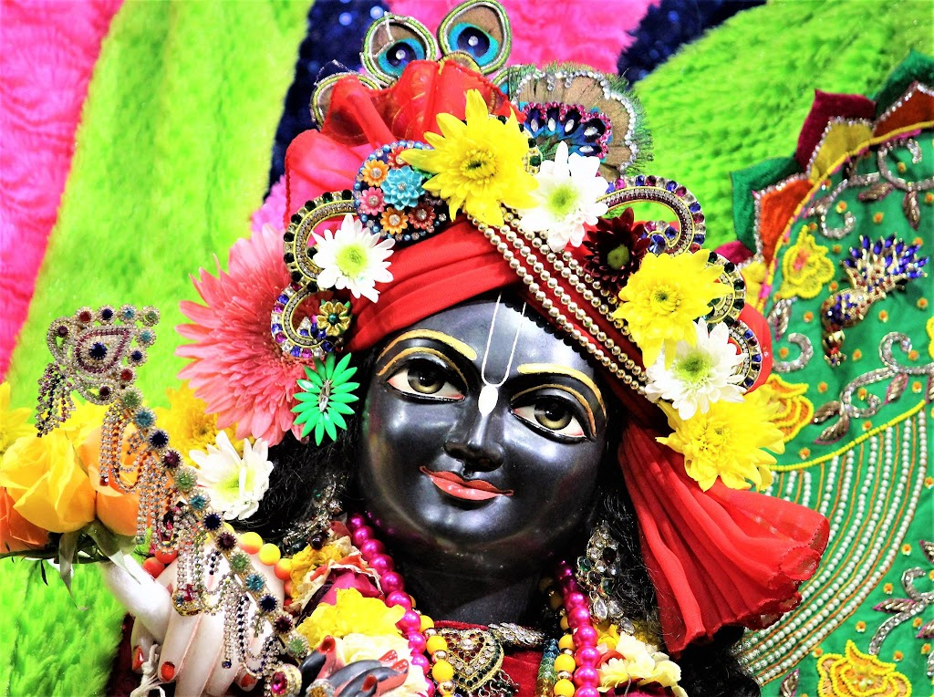 ISKCON Punjabi Bagh Deity Darshan 10 Jan 2017 (2)