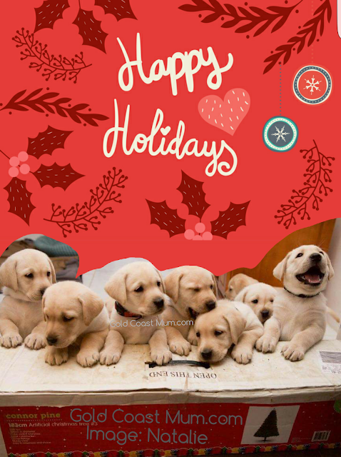 happy holidays from cheeky puppies, gold coast mum blog, labrador puppies