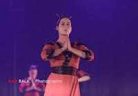 Han Balk Voorster dansdag 2015 avond-2703.jpg