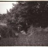 n008-037-1966-tabor-sikfokut.jpg