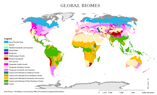 Biome Map Coloring Worksheet Answer Key – North American Biomes Worksheet