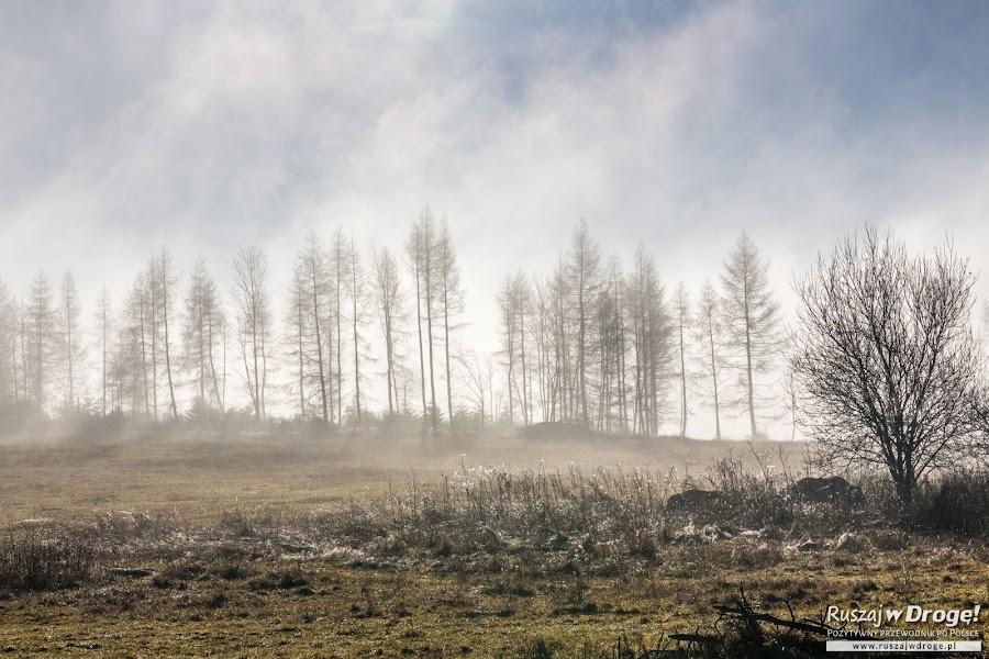 Pieniński Park Narodowy zimą - co za klimat!