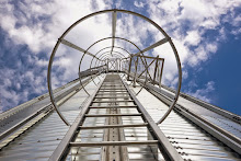 Caged Ladder for Silo Access