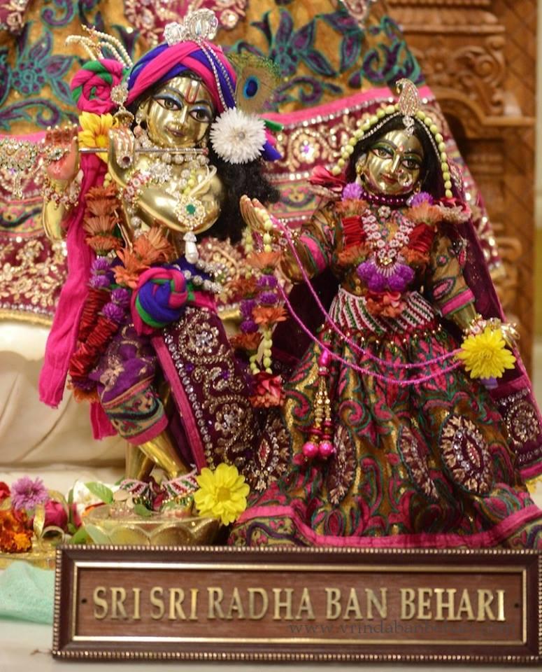 ISKCON GEV (Wada) Deity Darshan 23 Jan 2016 (9)