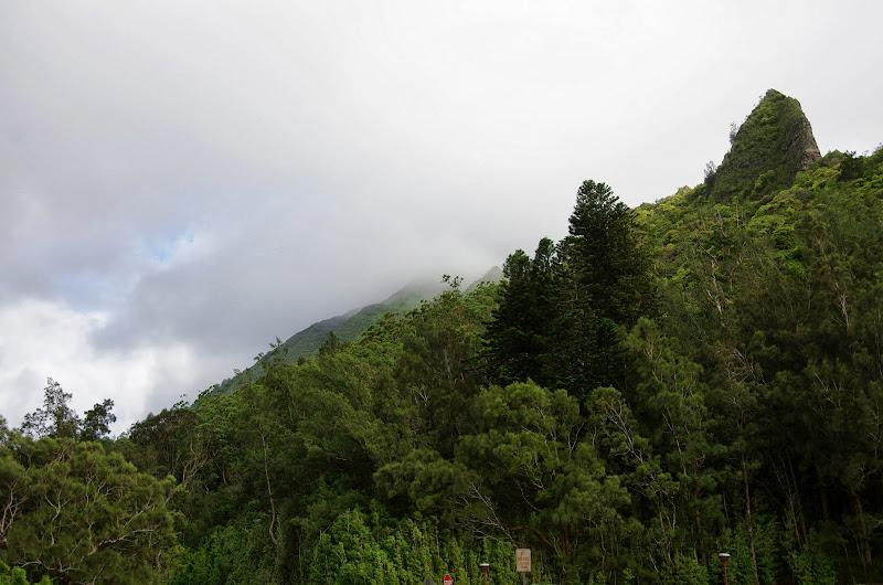 06-18-13 Waikiki, Coconut Island, Kaneohe Bay - IMGP6953.JPG