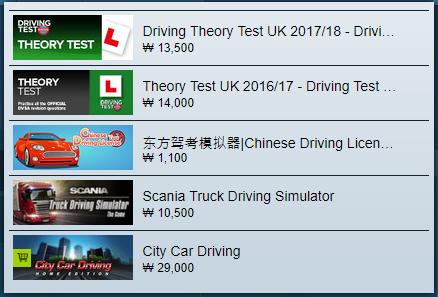 스팀 운전연습 게임