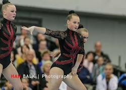 Han Balk Fantastic Gymnastics 2015-2439.jpg