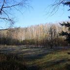 Озеро Круглое Подгоренский район 025.jpg
