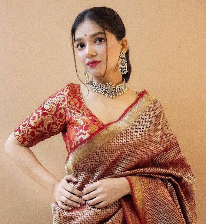 Checkout this Brand for the Most Amazing Banarasi Handwoven Saris !