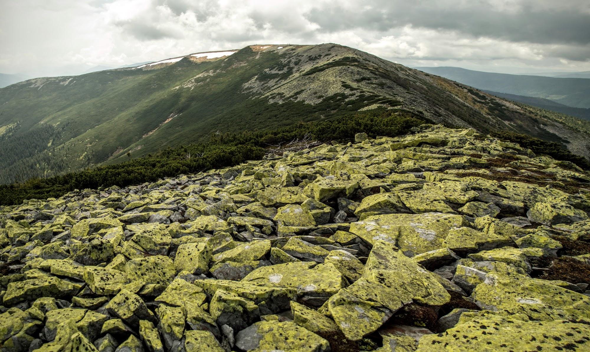 Panorama11.jpg