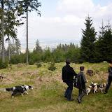 2014-04-13 - Waldführung am kleinen Waldstein (von Uwe Look) - DSC_0436.JPG