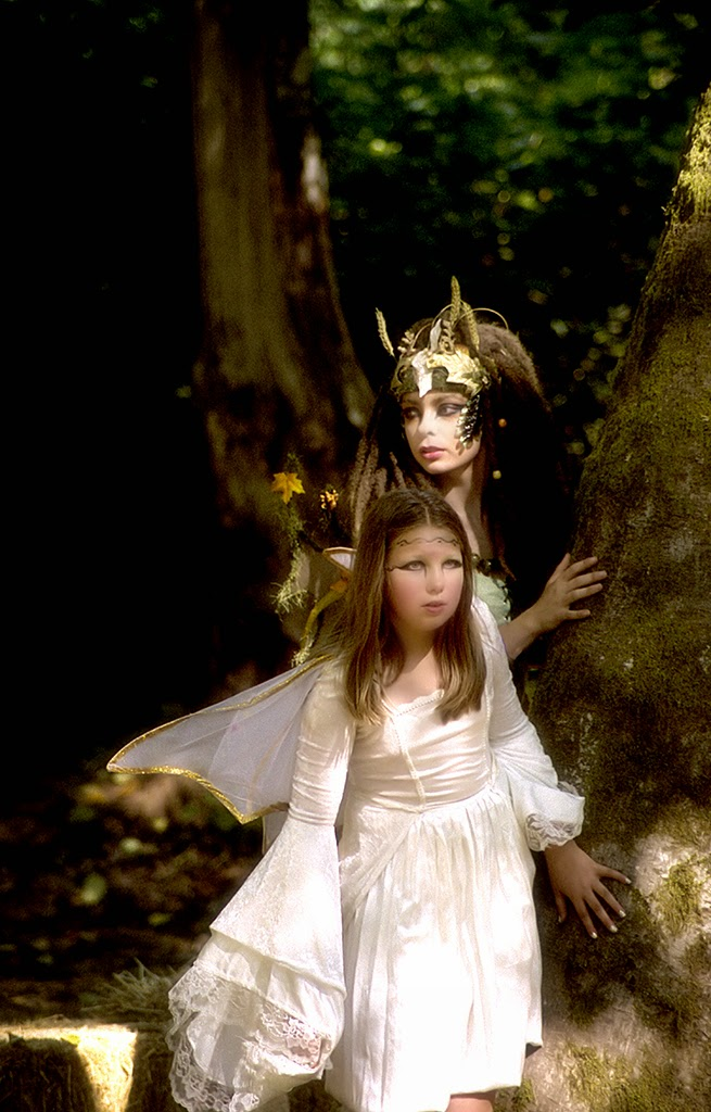 """""""Wood Fairies"""" by Robert Dunbar -- 2nd Place General B"""