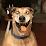 Prision Sangre's profile photo