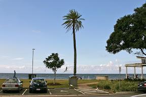 Beachfront, Sandgate