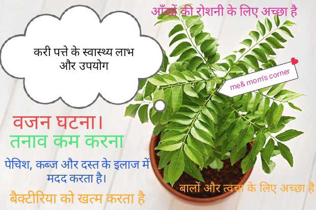 curry leaves(Kadi patta) benefits and uses करी पत्ते के फायदे और उपयोग  :