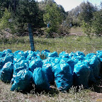 Уборка мусора на пляжах у Белой горы 014.jpg