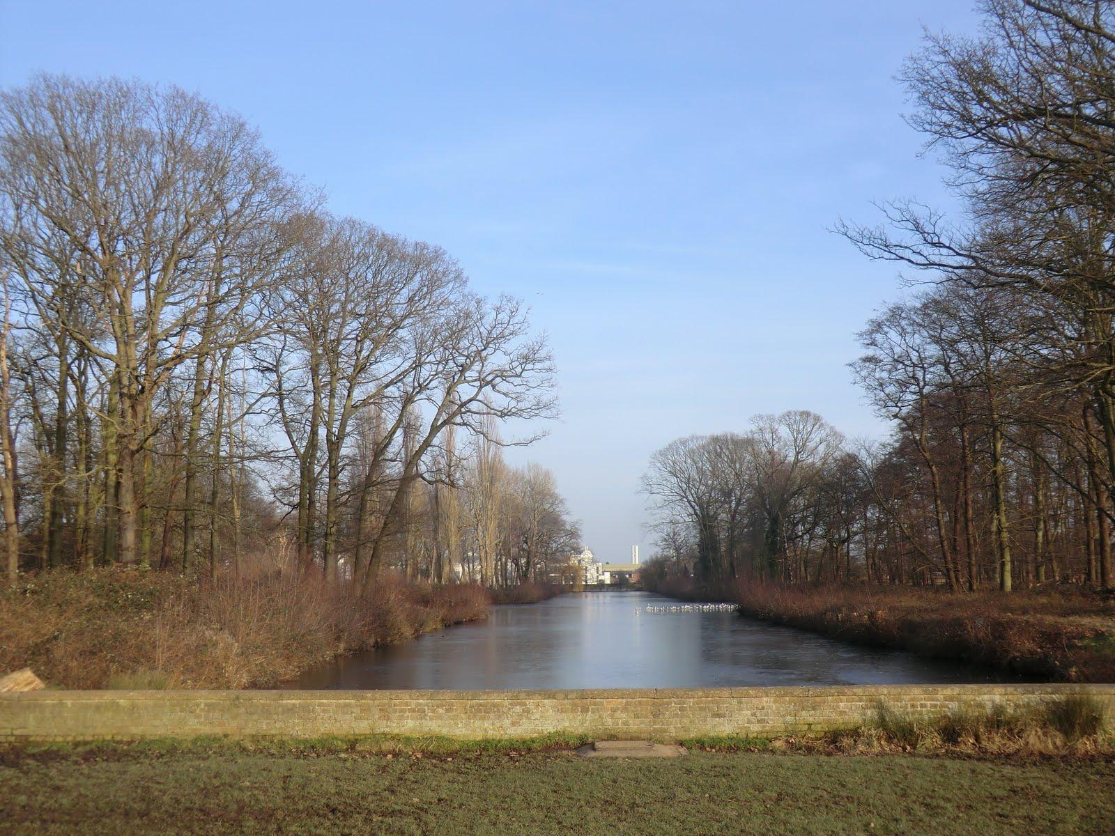 CIMG6548 Canal Plantation