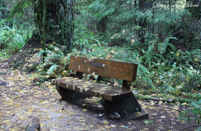 Whistler Lynn Canyon Stanley Park 143