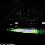 Ambiance - 2015 WTA Finals -DSC_0043.jpg