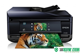 How to Reset Epson XP-800 printer – Reset flashing lights problem