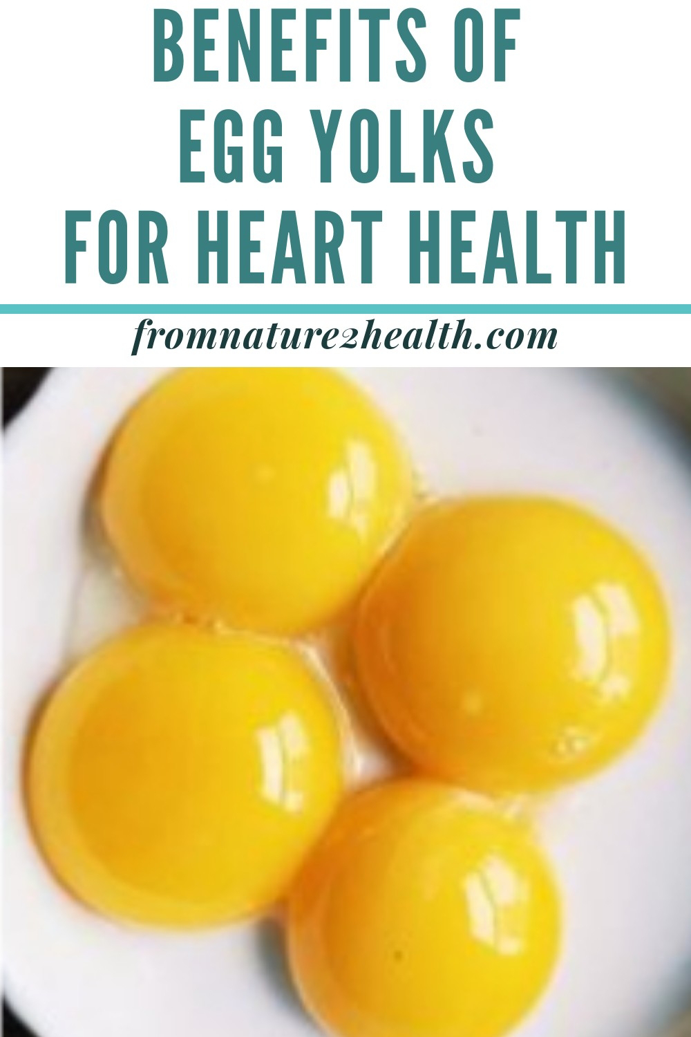Benefits of Egg Yolks for Heart Health
