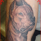 leg - Dog Tattoos