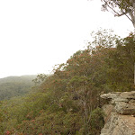 Distant view from Gap Creek Viewpoint off Monkey Face Road in the Watagans (322817)
