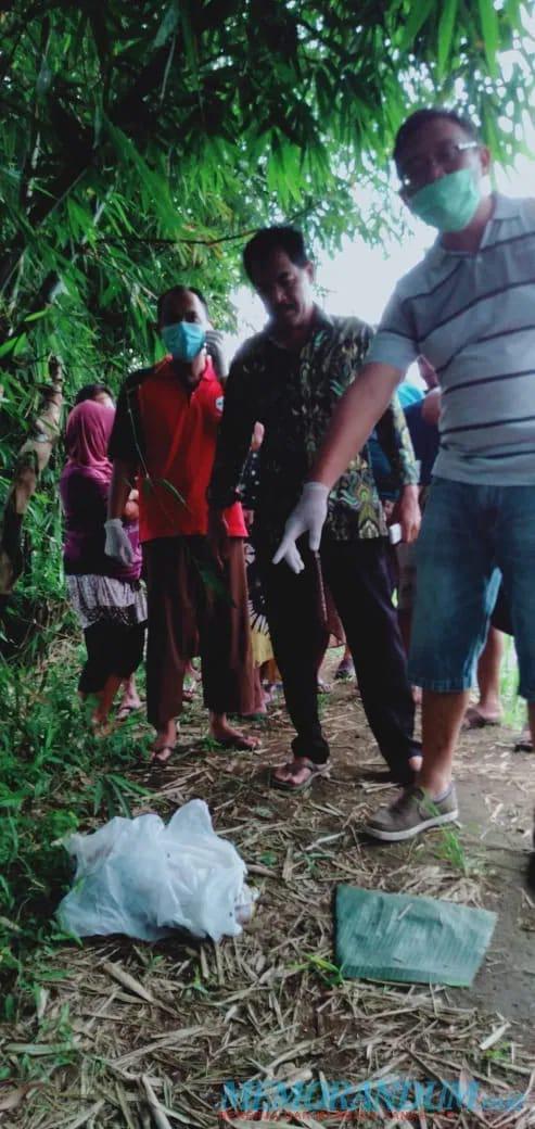 Penemuan Jasad Bayi Terbungkus Plastik di Desa Sumbersuko