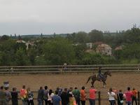 A versenyzők egyike a szomotori Rodeo-n.jpg