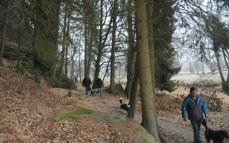 20140101 Neujahrsspaziergang im Waldnaabtal - DSC_9787.JPG