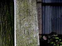 21 Fiuk, Csáky Tivadar sírköve.JPG