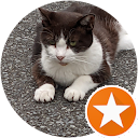 Hiroko T