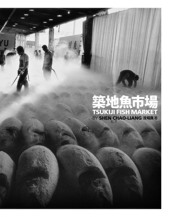 *2012年國際攝影獎:第10屆精彩作品! 18