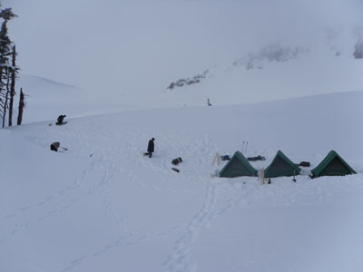 Tents are up;  let\'s start digging....