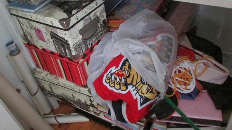 Closet organization needed