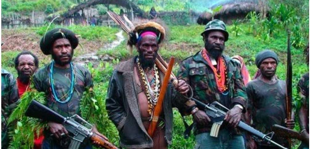 KKB Papua Harus Ditumpas